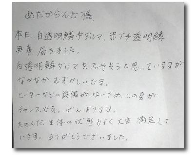 2011年7月静岡県Y.S様の画像