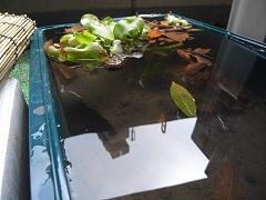 2012年4月東京都O.Y様の画像